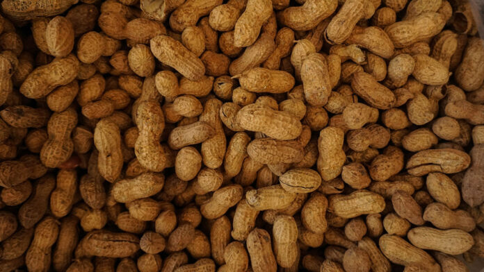 Peanut, Energy to Power your Day